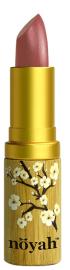 Noyah and other Non Toxic Lipsticks