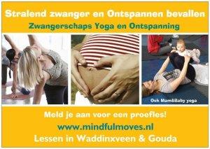 MM FLyer Stralend Zwanger en Ontspannen bevallen Mindful Moves