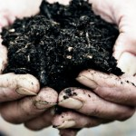 Eliot Coleman's Guide to Great Compost