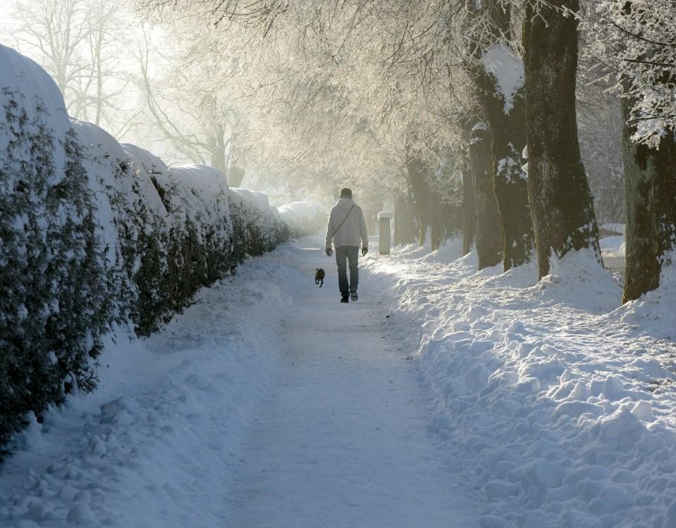 Všímavá chôdza v snehu - Mindfulness MBSR Slovensko