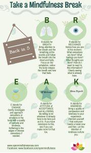 A Mindfulness Break