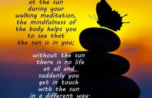 Mindfulness Quote and Image 12