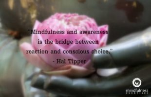 Mindfulness Quote and Image 167