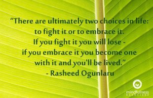 Mindfulness Quote and Image 198