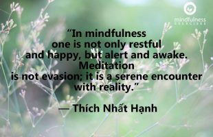 Mindfulness Quote and Image 204