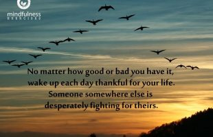 Mindfulness Quote and Image 48