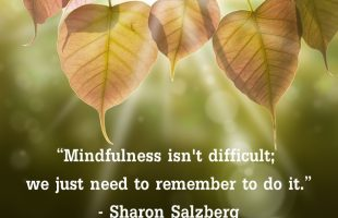 Mindfulness Quote and Image 66