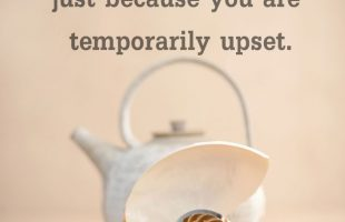 Mindfulness Quote and Image 70