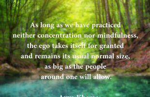 Mindfulness Quote and Image 85