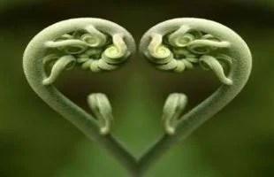 mindfulness exercises guided meditation 8