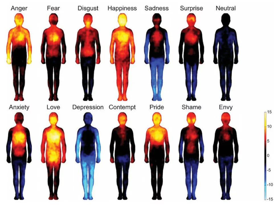Body Mapping of Emotions