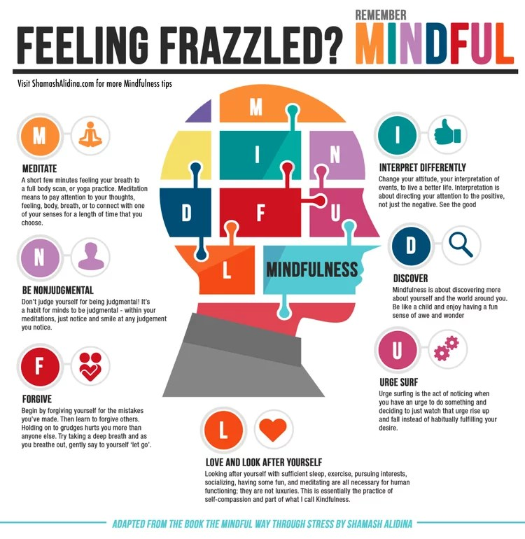 Free Mindfulness For Beginners Guides & Journal - Feeling Frazzled?