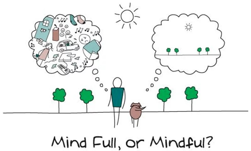 Mindfulness For Beginners - Mind Full, or Mindful?