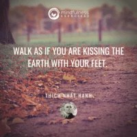 Walk As If You Are Kissing The Earth Thich Nhat Hanh