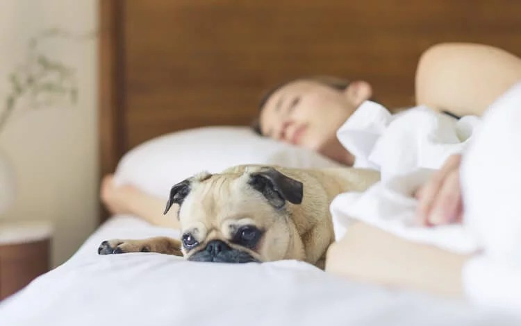 6 Ways to Use Mindfulness to Sleep Better