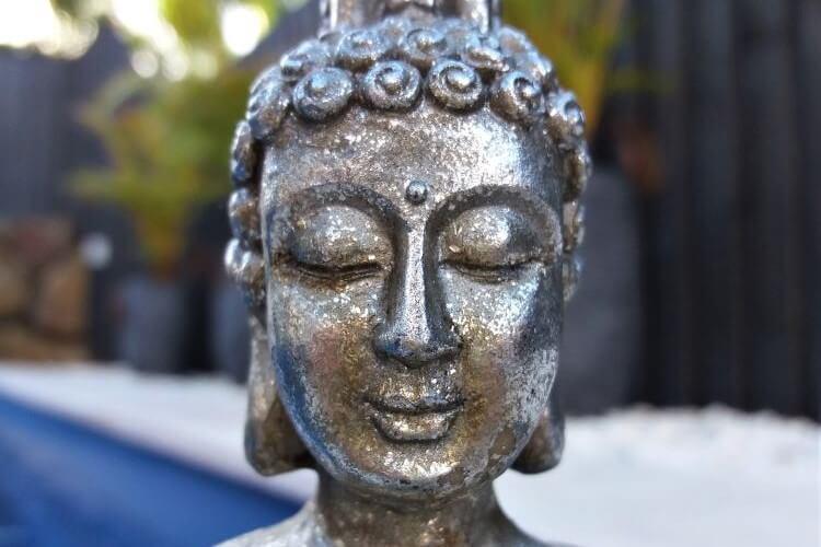 Mindfulness Body Scan for Wisdom