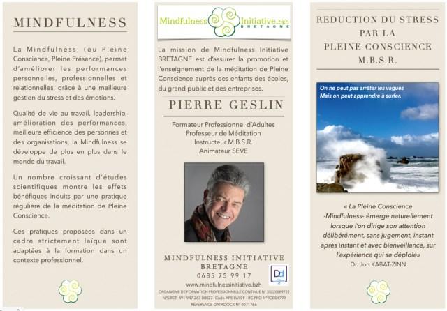"""Programme MBSR en ligne - """"live-online"""" - Méditation de Pleine Conscience et Réduction du Stress par la Pleine Conscience"""