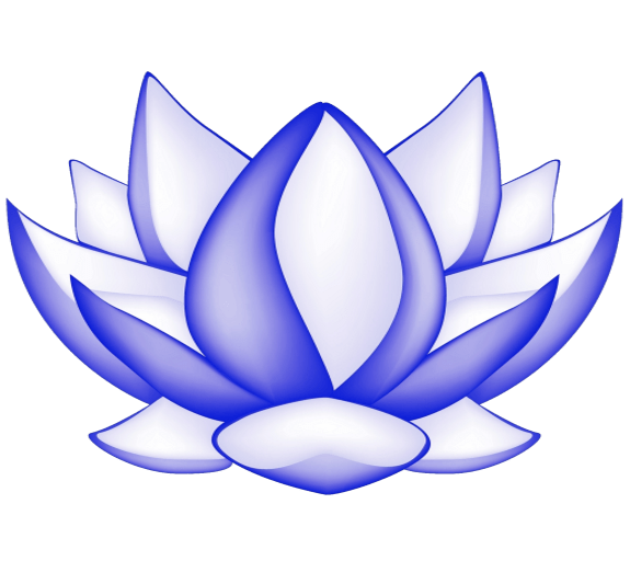 The Mindfulness Meditation Institute