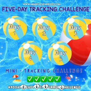 5 day tracking challenge grid