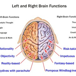 Left Side Brain Functions Diagram Spst Relay Wiring Use Your Whole With Mind Mapping Mindmaple