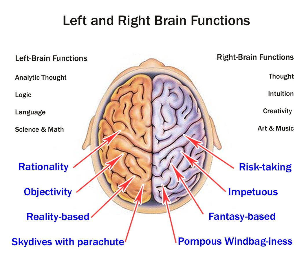 left side brain functions diagram browning a5 parts use your whole with mind mapping mindmaple
