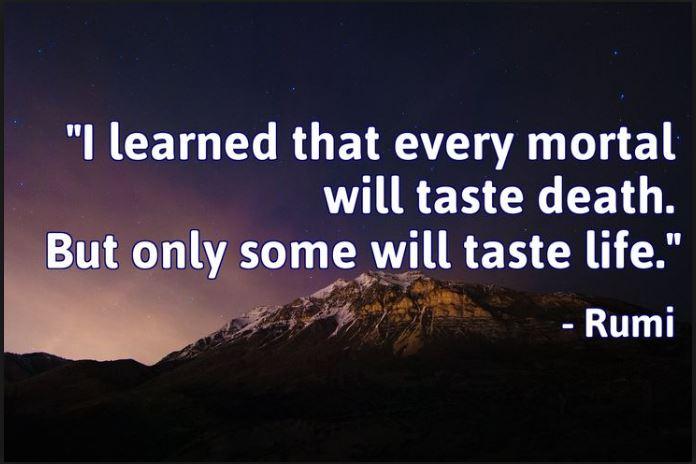 taste life