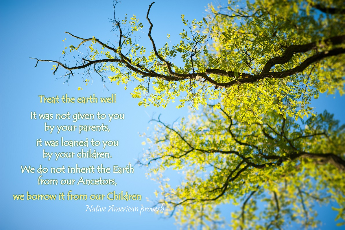 Fall Wallpaper Pintrest Native American Proverb On Ecology Nature And Mind