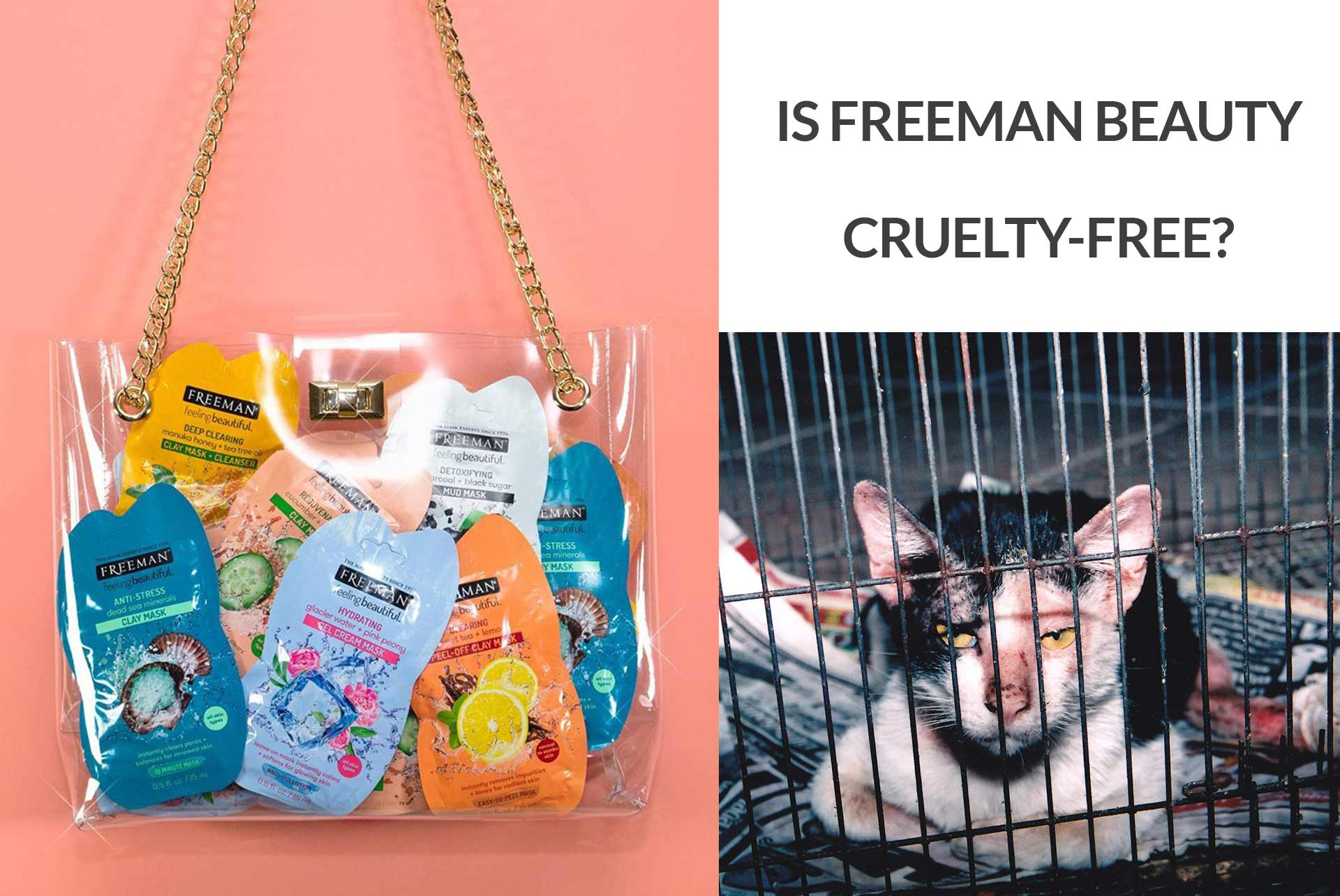 Is Freeman Beauty Cruelty-Free?