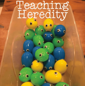 Teaching Heredity in Elementary School