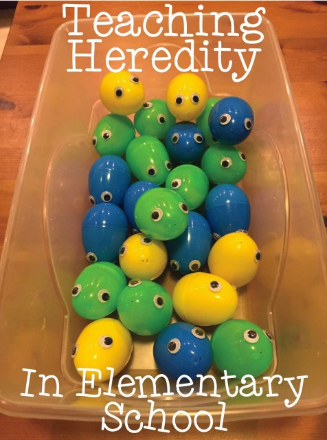 Teaching heredity in elementary school might seem too early, but with fun and easy activities like this one, it's no problem at all! Our guest blogger shares a meaningful and fun activity - with materials that you can use again in the future! - for teaching heredity in elementary school. Click through to get the activity.