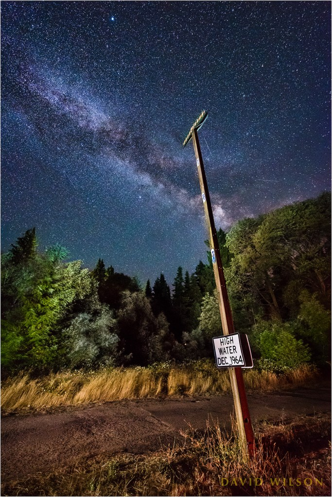 1964 Flood high water marker on the Avenue of the Giants, beneath Milky Way. Vertical composition.