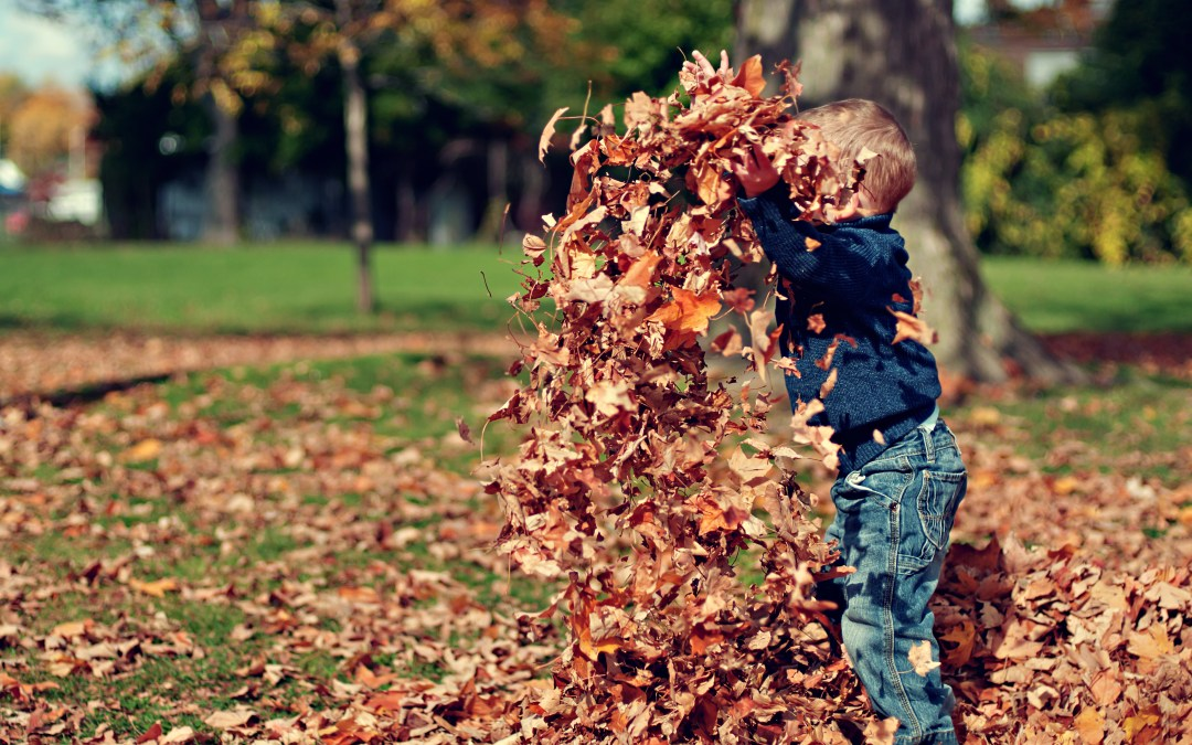 The Power of Play For Preschoolers