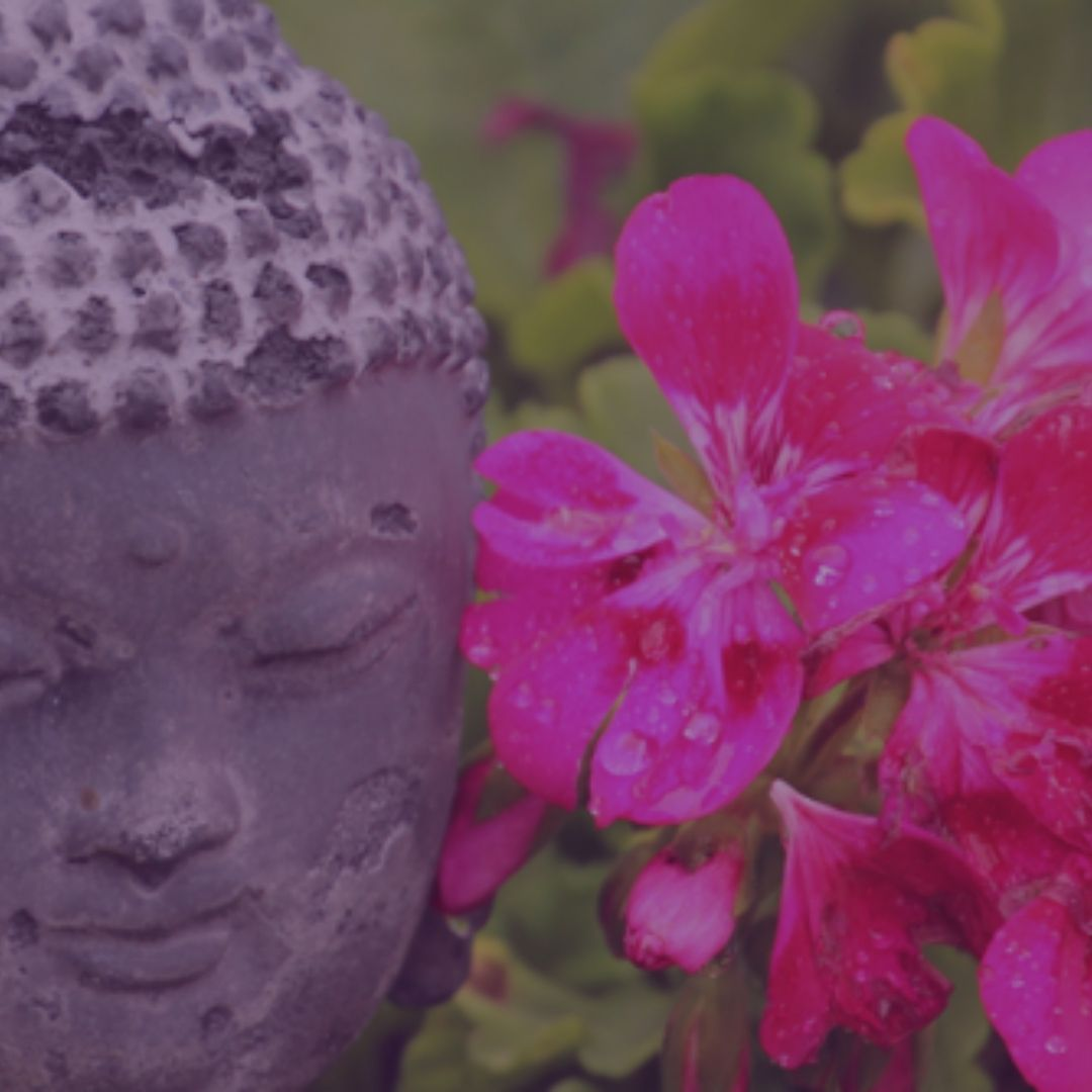 Frikvarter_meditation