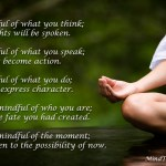 Be Mindful; Become Mindfulness: Awaken