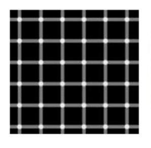 Scintillating grid illusion