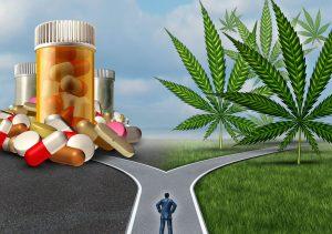Psilocybin In The Treatment Of Addiction