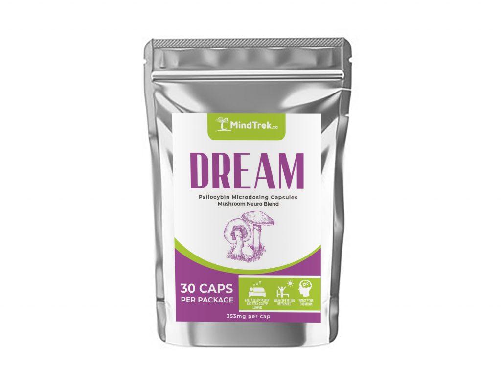 Dream - Mindtrek.ca