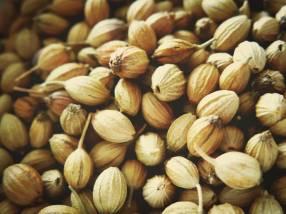 Sabut Dhania or Guta Dhonia (Whole coriander seeds)