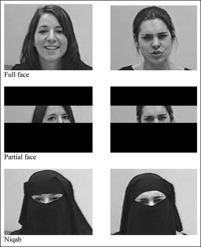 Распознавание эмоций в зависимости от видимости лица