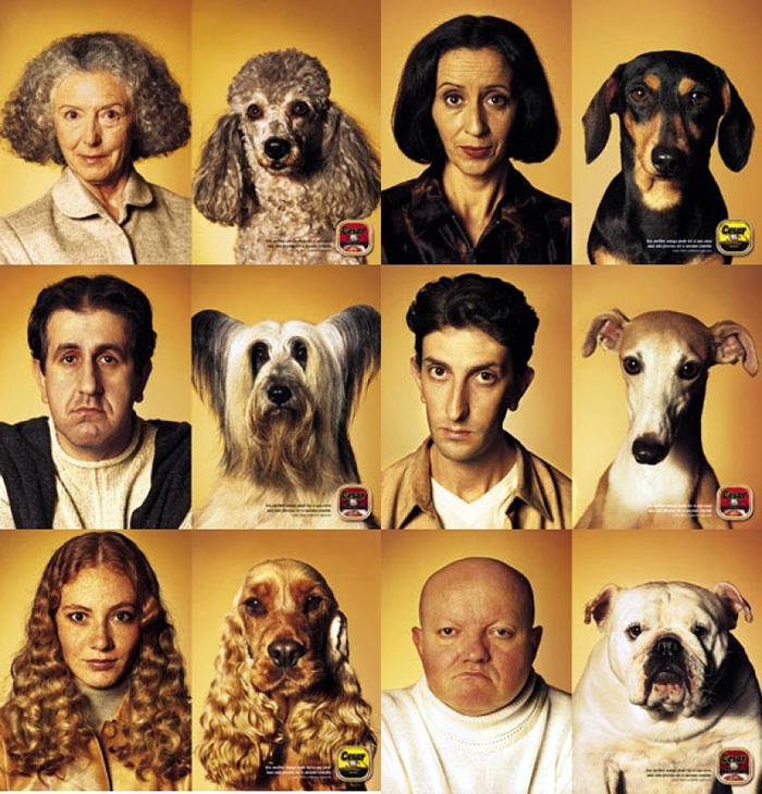 люди и их собаки