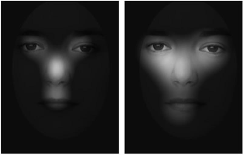как видят лица мужчины и женщины