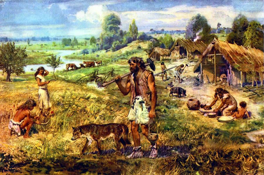 начало сельского хозяйства