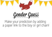 Gender Guess