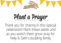 Seeds & Prayer