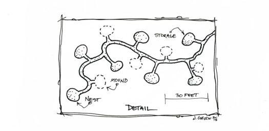 Gopher Mounds Birdseye