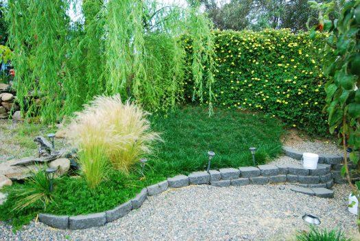 5_Bermuda Grass_Grassy Knoll
