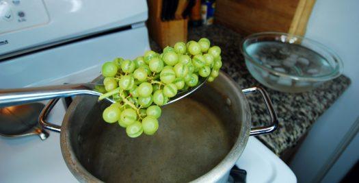How to Make Organic Raisins 06_Blanching the Grapes step 4