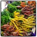 A rainbow of carrots at Portland Farmers Market.