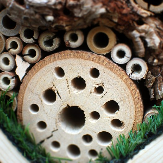 Detail of the Insect Hotel.