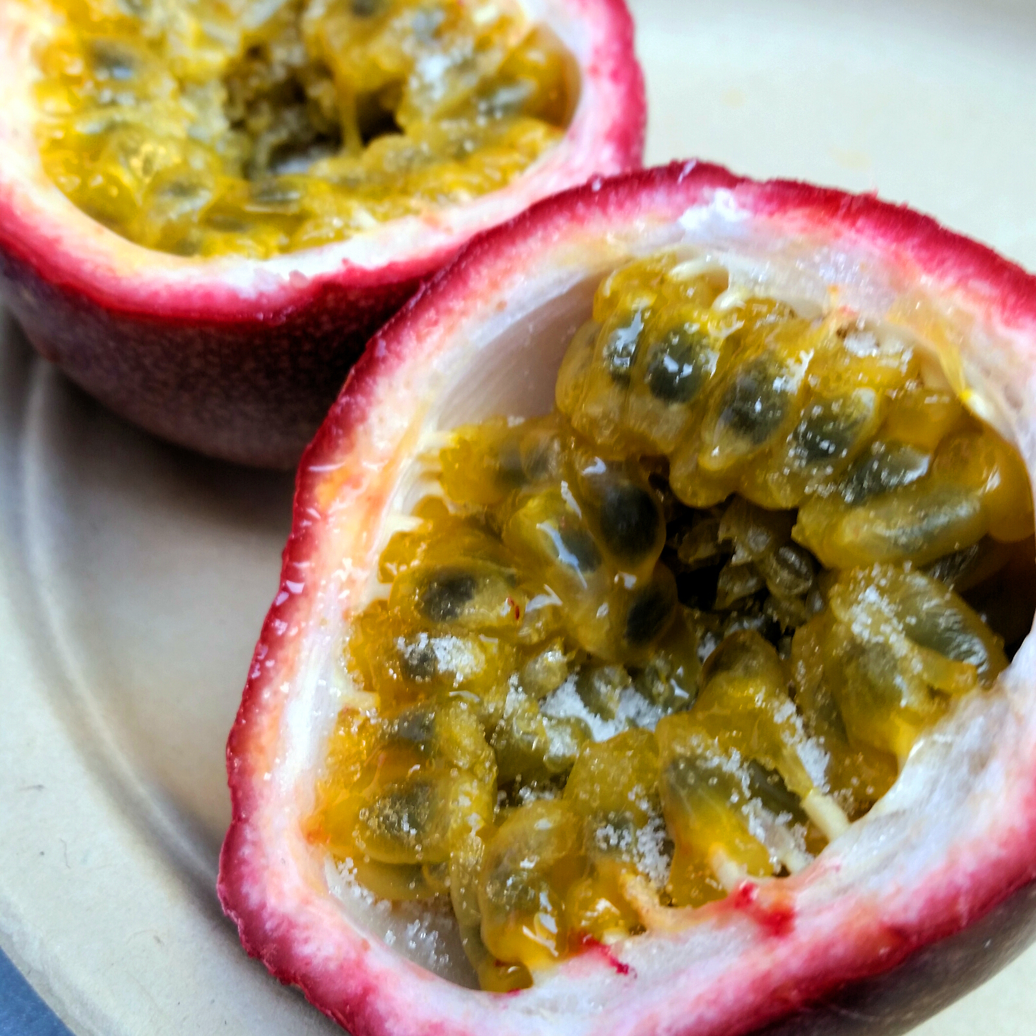 how to make fence for passion fruit